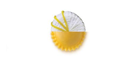 Girasoli ricotta e limone